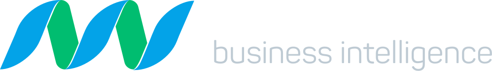 New Nexus Business Intelligence